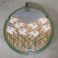 Manhole Cover - Himeji