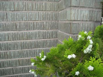 Wall Tiles in Matsumoto City