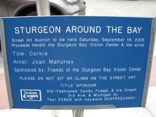 Sturgeon Around the Bay