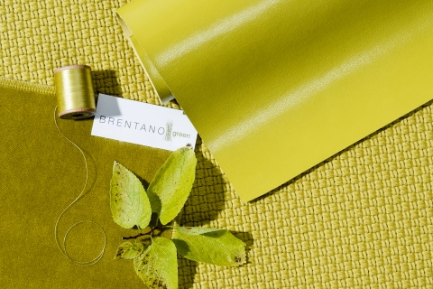brentano_colorforecast_2017_chartreuse
